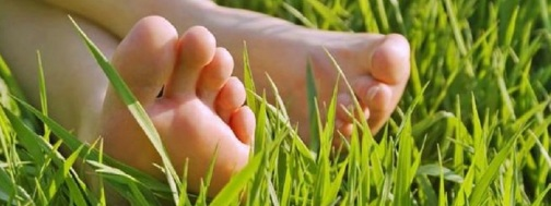 z-bare_feet_in_grass