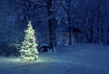 snowy-christmas